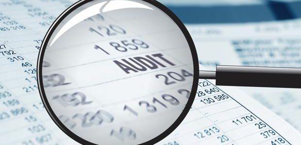 Nomenament i actuació dels auditors